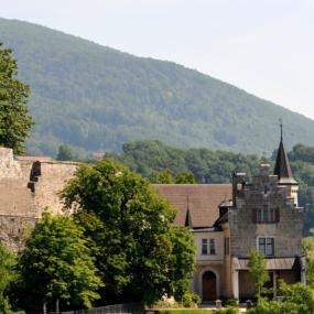 Schloss_Bipp_03_10